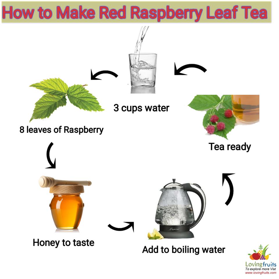 How to make raspberry leaf tea